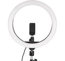 Кільцевий світло (комплект), професійна кільцева світлодіодна LED лампа для макіяжу, студії (Ø 30 см), фото 3