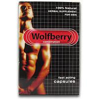 Wolfberry (волчя ягода)
