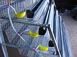 Годівниці пластикові для бройлерів, фото 7