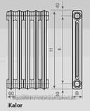 Чугунный радиатор Viadrus Kalor, фото 8