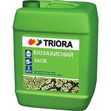 Биозащита для стен ТРИОРА 5 л