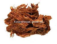 Красный корень 100 грамм (Копеечник)