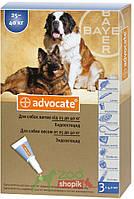 Защита от блох и клещей Bayer Advocate для собак от  25 кг.