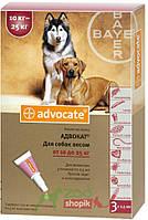 Защита от блох и клещей Bayer Advocate для собак от 10 до 25 кг.