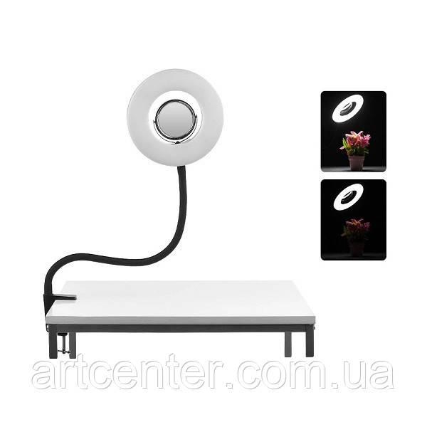 Кольцевая лампа для мастеров ногтевого сервиса, косметологов, бровистов, визажистов, блогеров (MS-20l)