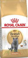 Сухой корм для кошек породы британская короткошерстная Royal Canin British Shorthair 10кг