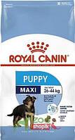 Сухой корм для собак Royal Canin Maxi Junior