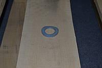 Шайба изогнутая Ф5 DIN 137В, фото 1