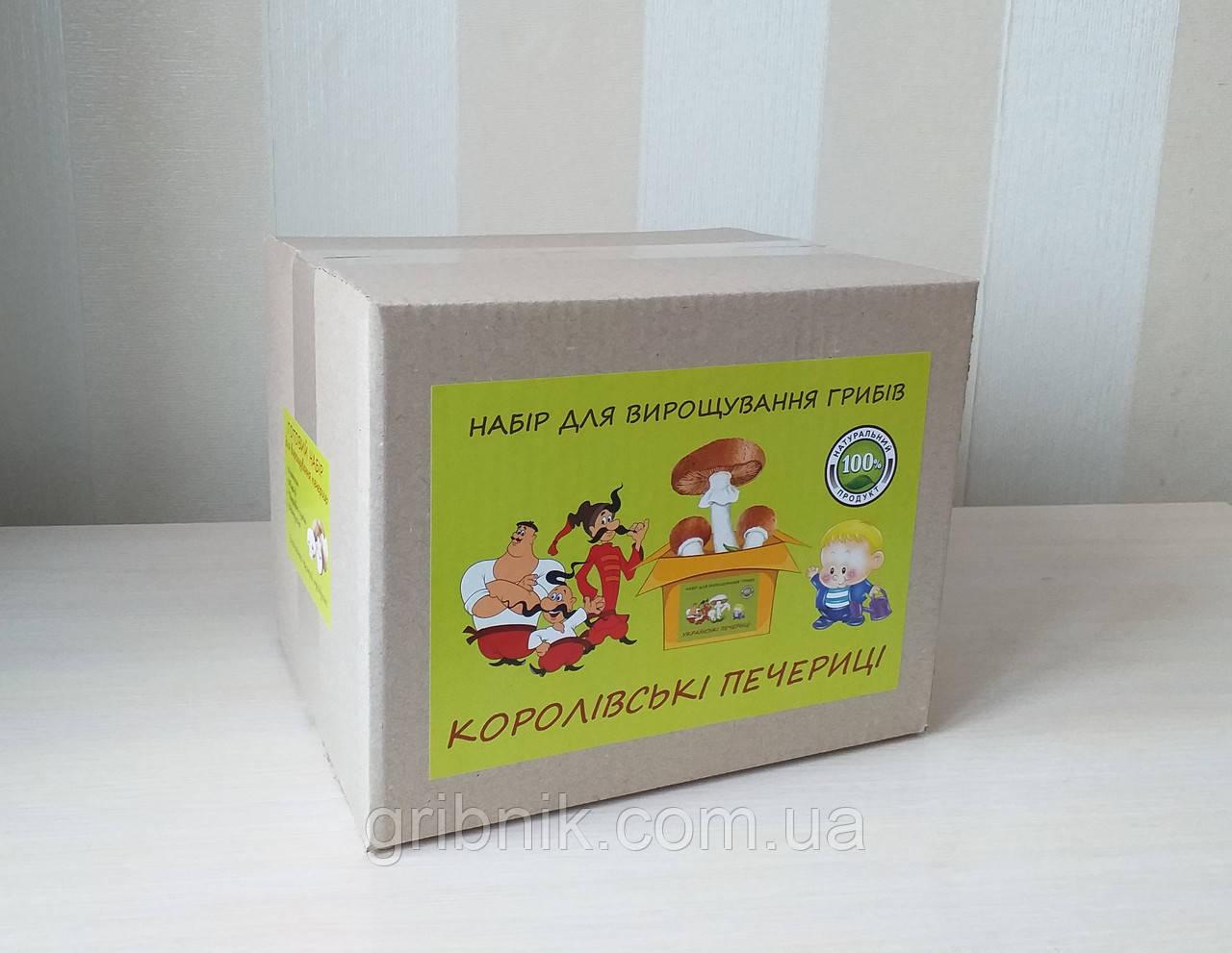 Грибная коробка для выращивания королевских шампиньонов (коричневые)