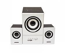 Акустическая система 2.1 FnT SW-801U USB, FM, фото 2