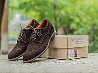 Туфли мужские замшевые броги / темно-коричневые