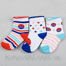 """Детские носки хлопковые для ребенка """"Божья коровка"""" для девочки 6-12 мес 12-18 мес"""