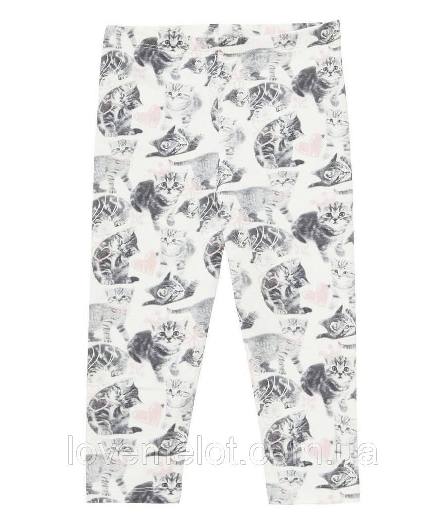 """Детские леггинсы трикотажные штаники на рост 80см  """"Котики"""" для девочки легинсы"""
