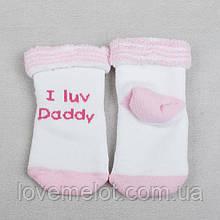 """Детские носочки махровые для девочки """"Люблю папочку!"""" 6-12 мес, для новорожденной носочки теплые"""