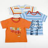 """Детская футболка на пуговицах для мальчика Marks&Spencer """"Обнимашка"""" полосатая, размер 68 см, фото 2"""