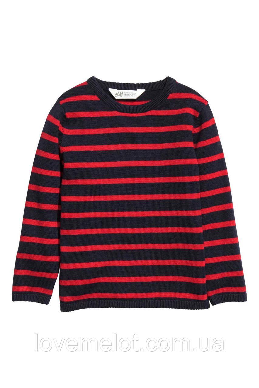 """Детский джемпер свитер для мальчика H&M """"Дарвин"""" для мальчика на рост 104, 116 и 128см"""