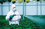 Инсектицид «Дестрой» — надежная защита Вашего урожая!
