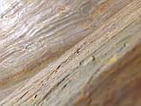 Каменный шпон BURNING FOREST 610x1220mm, фото 3