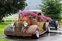 Як підготувати автомобіль до весни?
