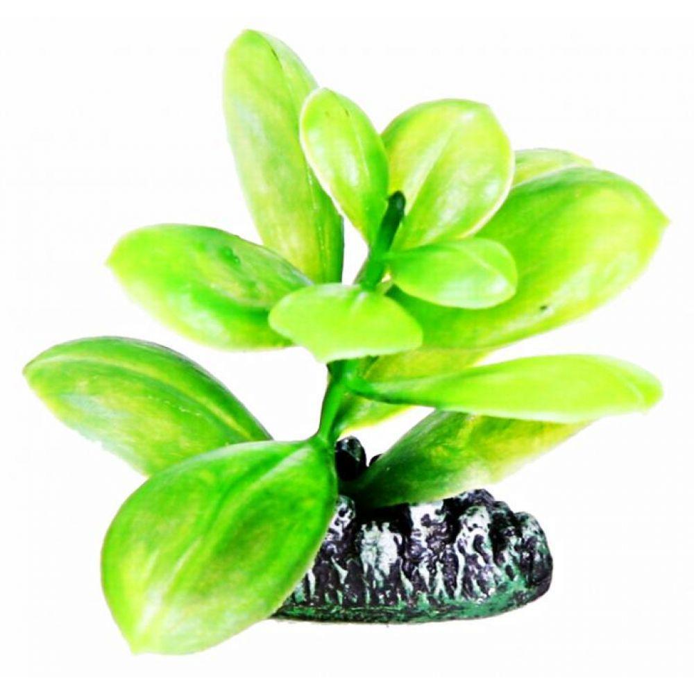 Aquatic Plants Растение 8см 0880