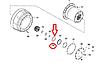 6520-2405092 Шайба стопорная шестерни колесной передачи КАМАЗ 6520 ЕВРО-2 (пр-во КамАЗ), фото 3