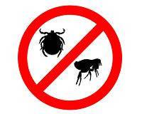 Средства от паразитов для грызунов