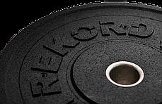 Бамперный диск Rekord 20 кг (BP-20), фото 2