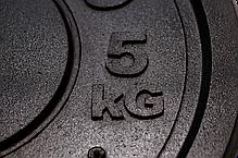 Бамперный диск Rekord 5 кг (BP-5), фото 2