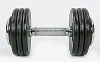 Гантель цельная профессиональная стальная RECORD (1шт) 50кг TA-7231-50