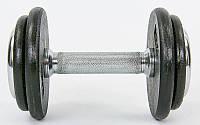 Гантель цельная профессиональная стальная RECORD (1шт) 7,5кг TA-7231-7_5