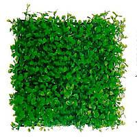 Aquatic Plants Растение-коврик 25*25*5см 0526