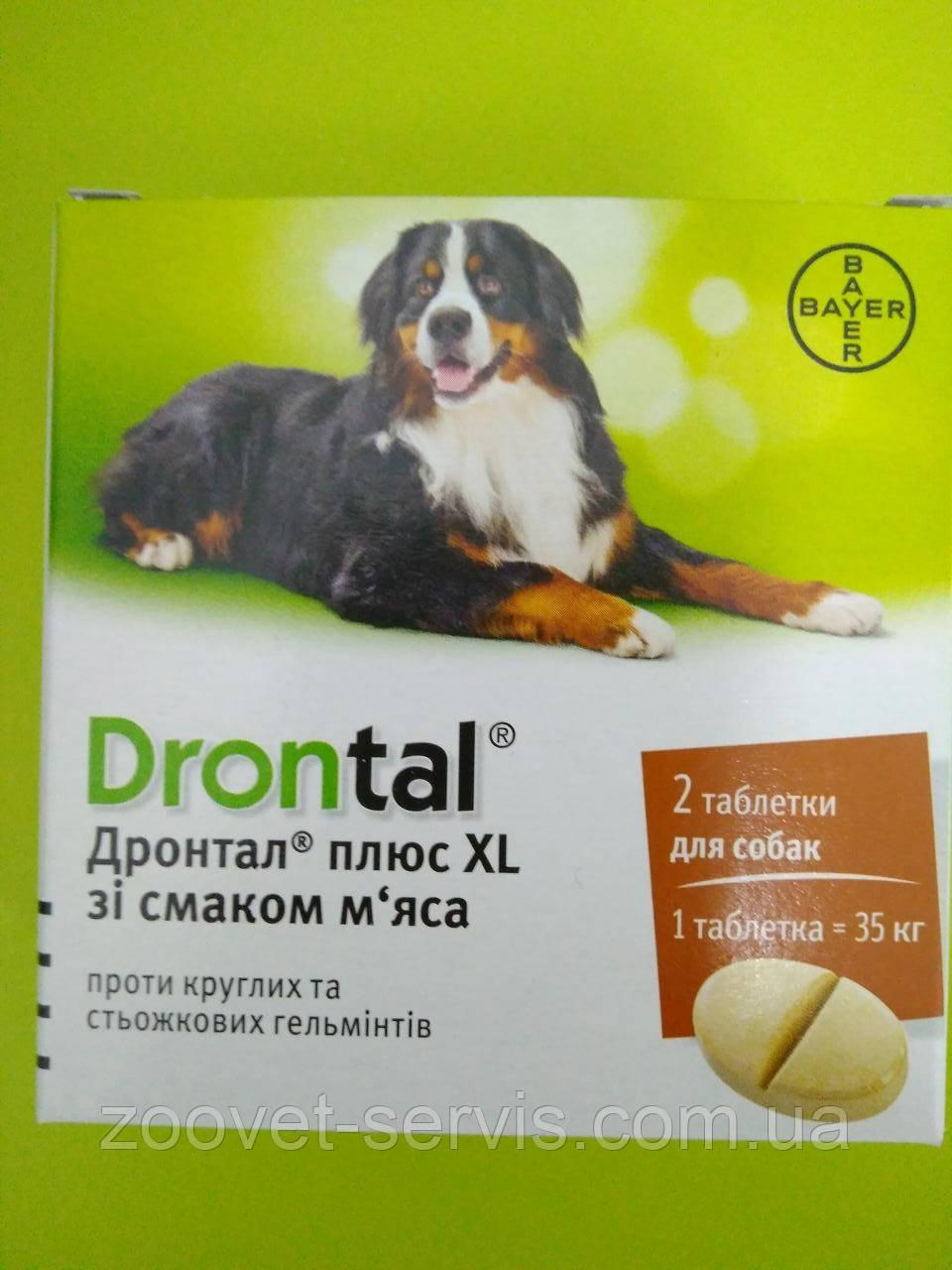 Антигельминтик для собак (со вкусом мяса)ДРОНТАЛ Плюс XLBayer