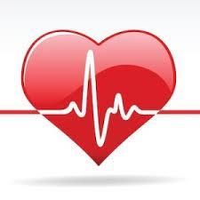 Ветеринарная кардиология