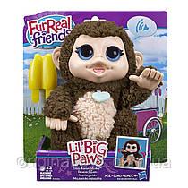 Интерактивная обезьянка с бананом FurReal Friends Lil Big Paws