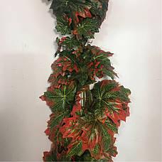 Искусственная лиана клён.Клен с красными кончиками., фото 3