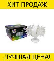 Диско лампа LASER LW LH02