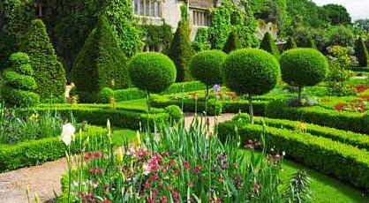 Уход за садом , фото 1