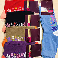 Носки женские демисезонные хлопок 100% Житомир ТМ Крокус размер 23-25(36-40) ассорти