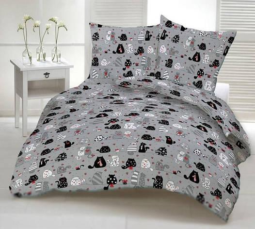 Двуспальный комплект постельного белья евро 200*220 хлопок  (10973) TM KRISPOL Украина, фото 2
