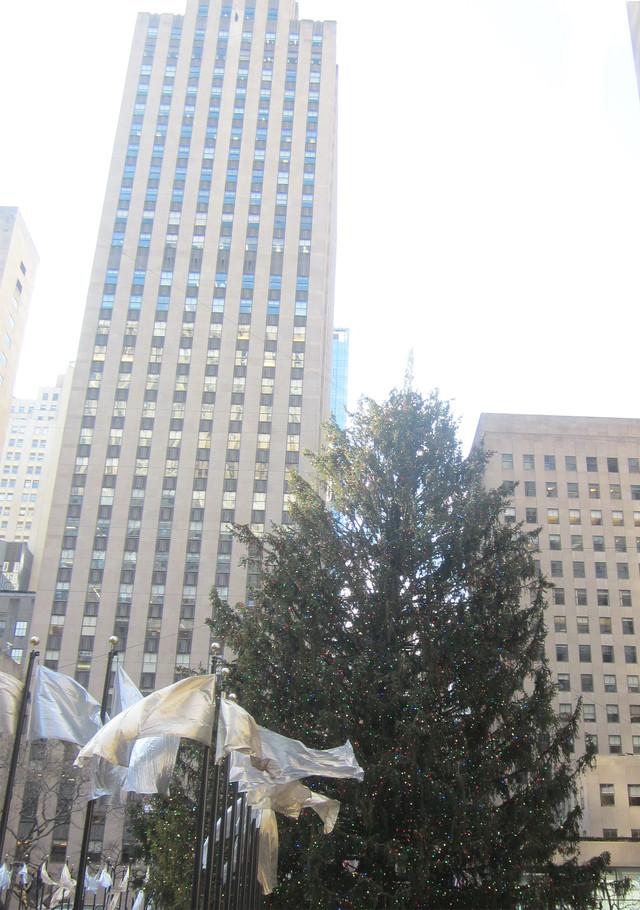 Раздел Женские водолазки и гольфы - фото teens.ua - Нью-Йорк,новогодняя елка в Рокфеллер Центре