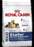 Сухой корм (Роял Канин) Royal Canin Maxi Starter 4 кг для щенков крупных размеров