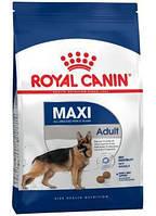Сухой корм (Роял Канин) Royal Canin Maxi Adult 4 кг для собак крупных размеров