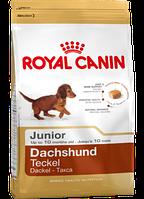 Сухой корм (Роял Канин) Royal Canin Dachshund Junior 1.5 кг для щенков породы такса в возрасте до 10 месяцев