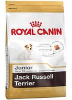 Сухой корм (Роял Канин) Royal Canin Jack Russell Terrier Junior 3 кг для щенков джек рассел терьера