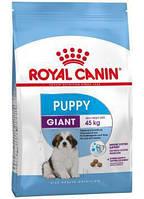 Сухой корм (Роял Канин) Royal Canin Giant Puppy 4 кг для щенков собак очень крупных размеров