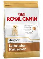 Сухой корм (Роял Канин) Royal Canin Labrador Retriever Junior 12 кг для щенков лабрадор ретривер