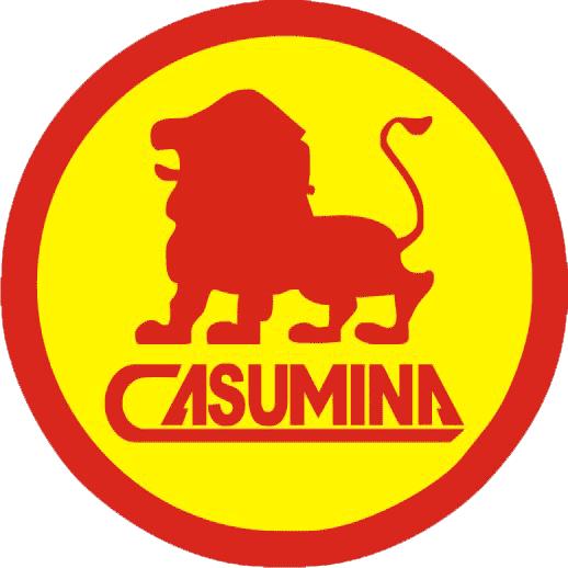 Мотошины, гума, покришки Casumina