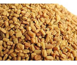 Семена пажитника для проращивания 100 г 1
