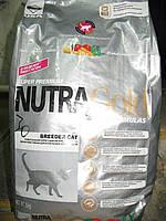 NUTRA GOLD Breeder Cat  5кг (Нутра голд) корм для котов всех пород возраста и активности