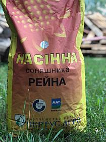 Семена подсолнченика устойчивого к 8 расам заразихи  Рейна May Agro Seed  Нертус